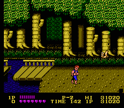 Double dragon3.png - игры формата nes